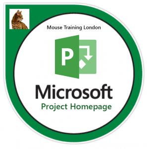 Microsoft Project training courses, Microsoft Project Training Courses in London