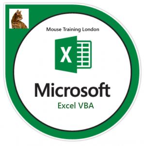 Excel VBA Advanced Training Course